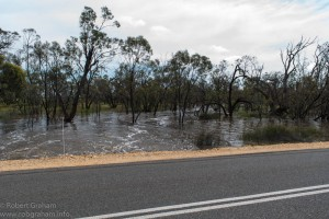 Tyrrell Creek Floods
